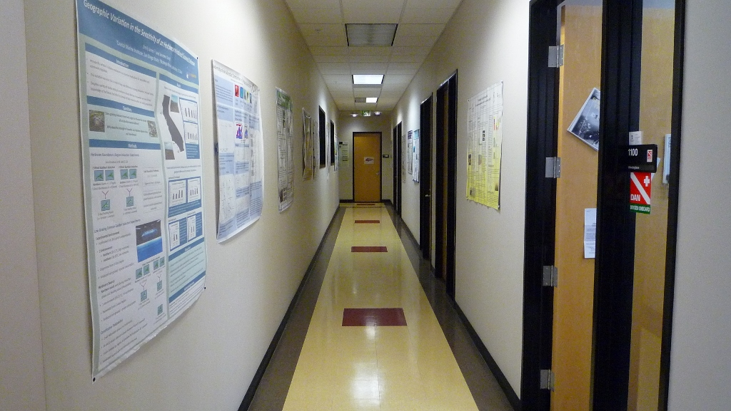 hallway with doors to offices and posters on the walls