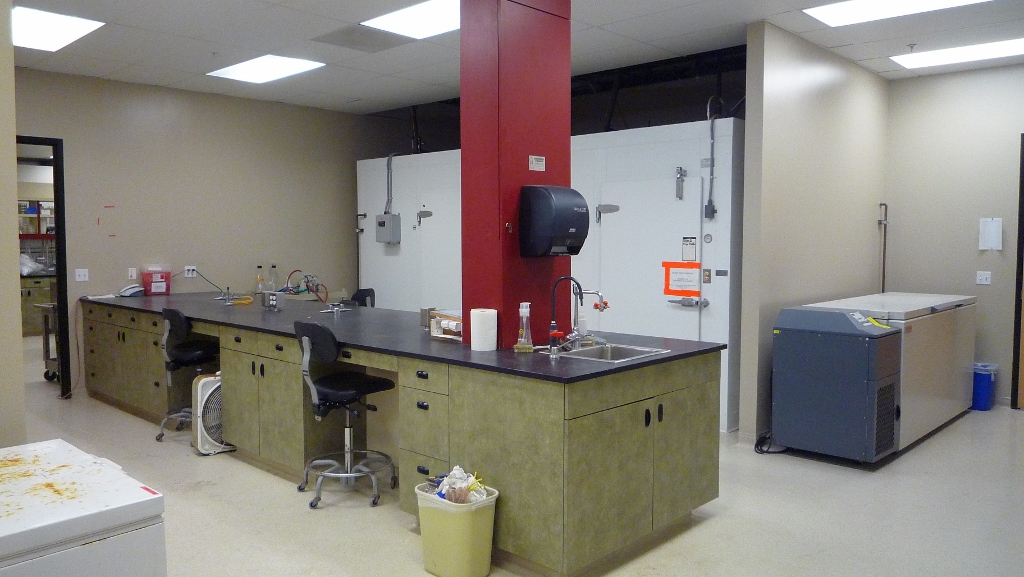 lab with a freezer and lab bench