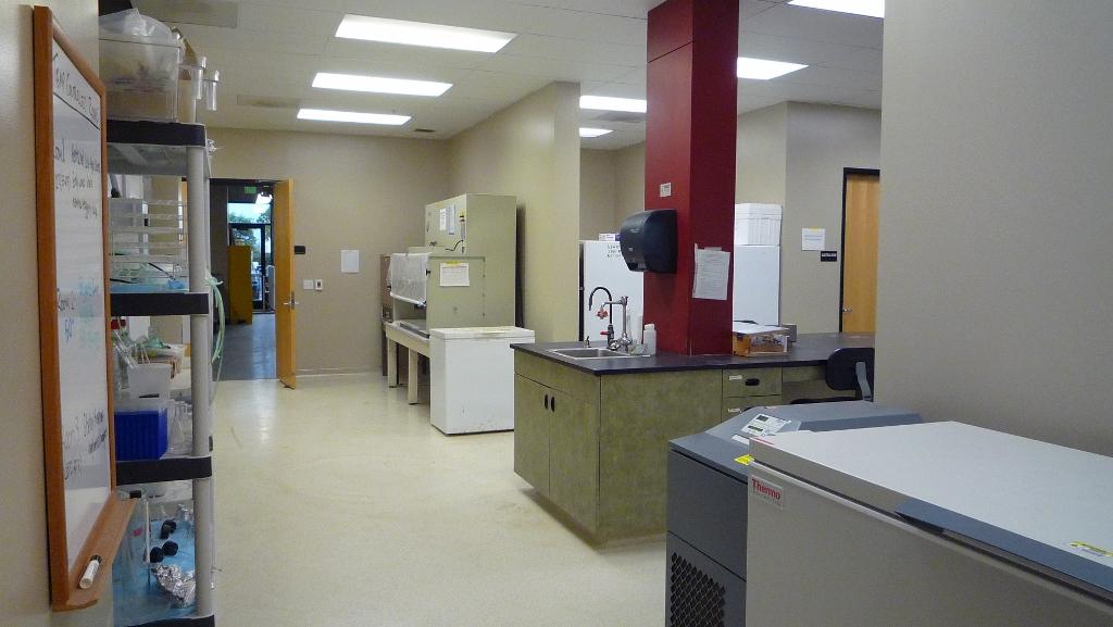 lab with a freezer lab bench