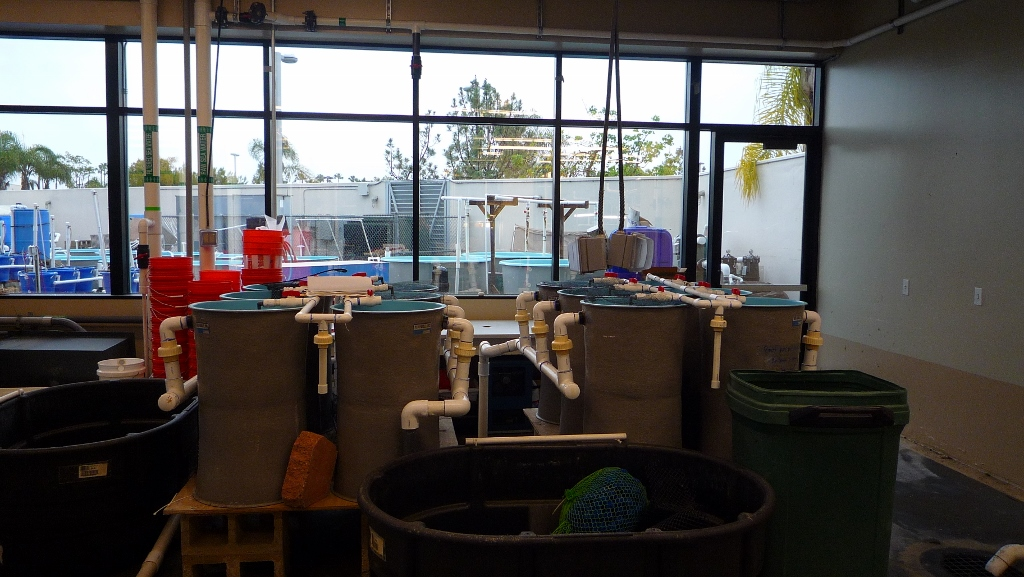 indoor wet lab with various tanks and aquaria