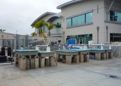 outdoor wet lab area with various sized tanks and tubs