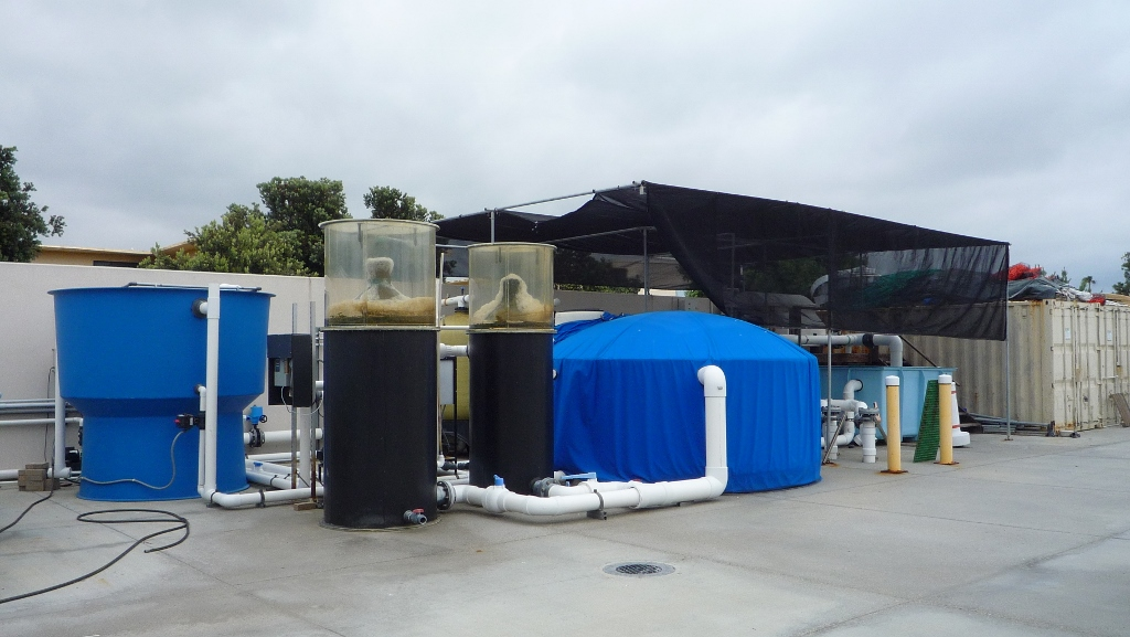 flow through seawater filtration system